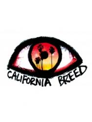 GLENN HUGHES - CALIFORNIA BREED
